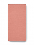 Румяна ChromaFusion™ Розовый нюд (матовый)